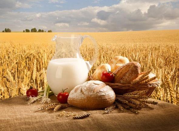 Картинки по запросу Сегодня День работников сельского хозяйства в Украине